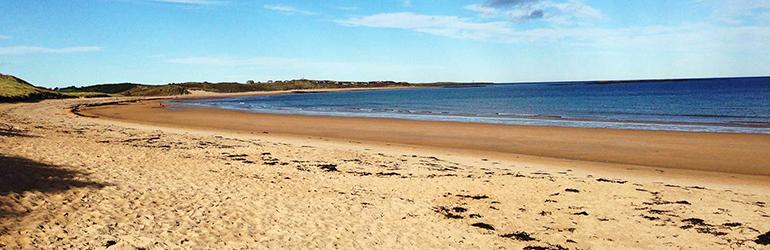 pet-free holiday cottages on the Northumbrian coast, cycling holidays around Northumberland
