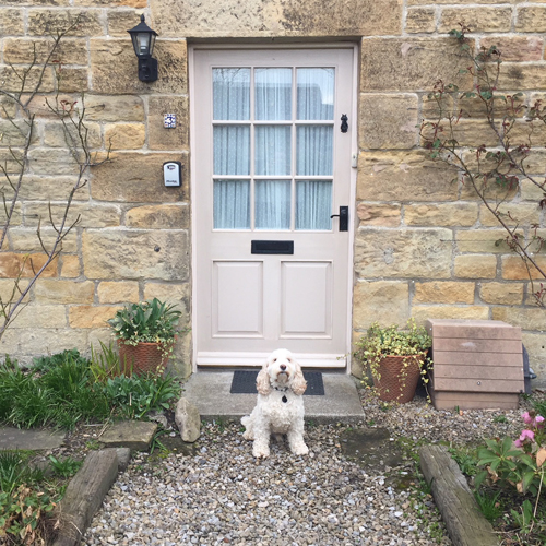 Dog friendly cottages in Northumberland
